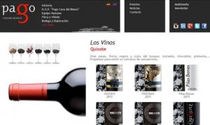 Diseño Web de Pago Casa del Blanco