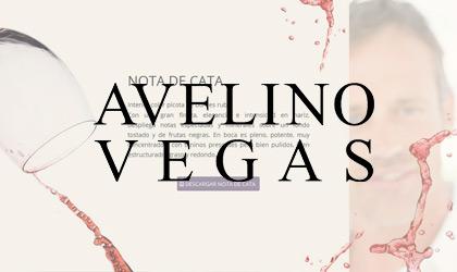 Bodegas Avelino Vegas